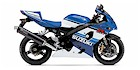 2005 Suzuki GSX-R 600 20th Anniversary