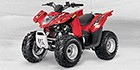 2013 Arctic Cat 90 DVX