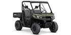 2019 Can-Am Defender DPS HD10