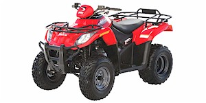 2006 Arctic Cat 250 2x4