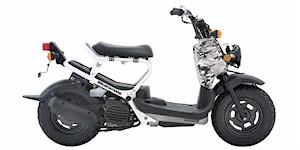 2007 Honda Ruckus Base
