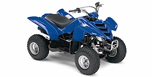 2007 Yamaha Raptor 50