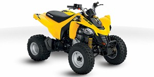2014 Can-Am DS 250